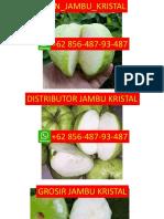LANGSUNG DARI PETANI, NO WA 0856-487-93-487, Jambu Kristal Palembang