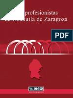 LOS PROFESIONISTAS DE COAHUILA DE ZARAGOZA