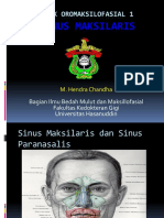 Sinus Maxilaris Sudah Di Edit