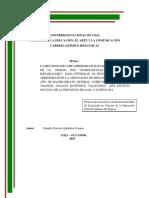 tesis chandry.docx