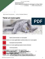 Tener un nuevo gato _ PURINA®.pdf