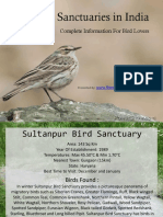 Bird Sanctuaries in India 3973534