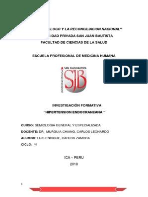 Fisiopatología de la presión intracraneal elevada pdf