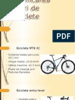 Clasificarea Tipuri de Biciclete