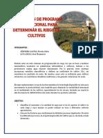 RIEGOS-I-FIORELA.docx