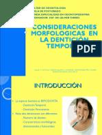 Consideración morfología en dentición temporal