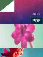 flores.pptx