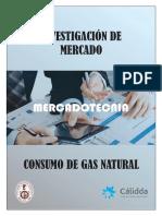 Investigación de mercado del consumo de gas natural cálida.docx