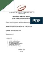 ESTADIAJE Y GRADACION.pdf