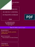dolor GATOS.pdf