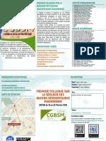 CGBSM.pdf