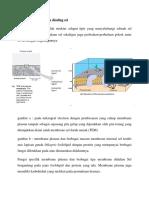 Membrane Plasma Dan Dinding Sel
