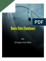 7._EDI_PA_Basis_Data.pdf