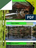 Taller de Diseño IX Centro de Interpretacion de la lengua omagua y ecologde