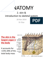 2. Skin & Skeletal 1