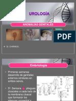 anomalias-140724052018-phpapp01