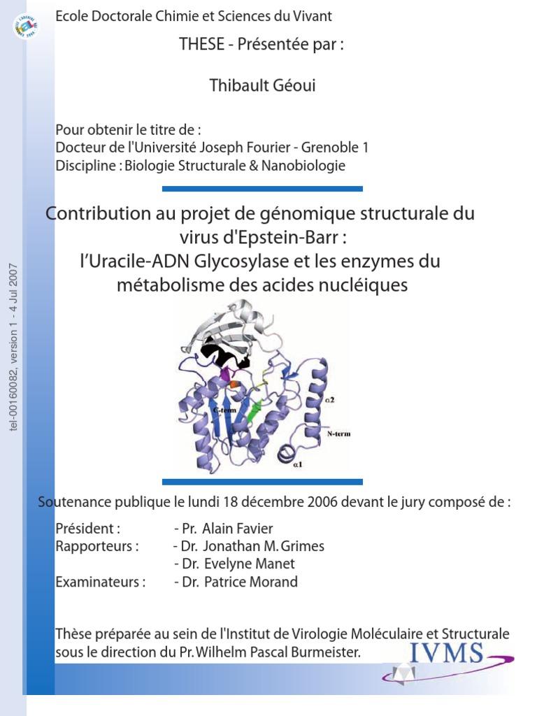 Structural Biology Epstein Virus Barr Geoui 9D2HEI