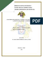 Informe Final de Tesis (1)
