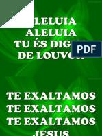 ALELUIA (NÍVEA SOARES).pptx