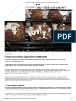 5 Dicas Para Cultivar Cogumelos Corretamente _ SF Agro _ Farming Brasil