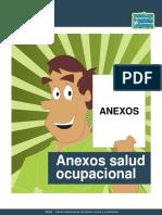 Anexos_salud_ocupacional.pdf