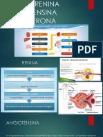 Sistema Renina Angiotensina Aldosterona Alvaro