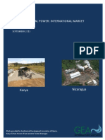 2013 International Report Final