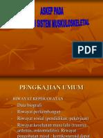 muskulo-2.ppt