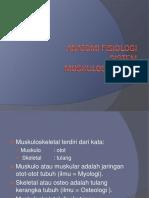 anfis-muskuloskeletal2.pptx
