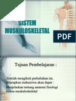Anatomi fisiologi sist muskuloskeletal.ppt