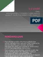 UJI-DMRT.pptx