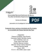 Proyecto LIF VI.docx