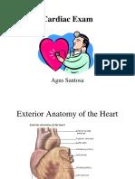 Cardiac Exam
