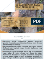 Diversitas Gastropoda Pada Kawasan Mangrove