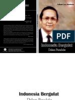 256-2009. buku indonesia bergulat dalam paradoks_leo.pdf