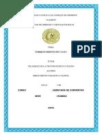 contratos 1313 -13.pdf