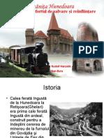 Mocăniţa Hunedoara - Istoria, efortul de salvare şi reconstrucţie