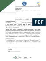 Anexa 3 - Decl. disponibilitate.doc