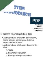 Sistem Reproduksi Kel.5 Xi-A4