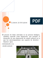 Lodos Activados.pptx