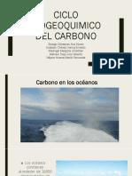 Ciclo bioquímico del carbono