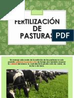 Fertilizacion de Pasturas