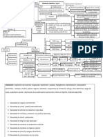 Mapa Conceptual DM1 pediátrico