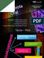 Micobiologia Oral