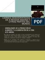 Carnes Deshidratadas de a Region Andina y Otras Partes Del Mundo