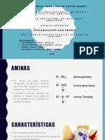 aminas (3).pptx