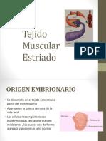 Tejido Muscular Estriado