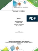 Informe Practica Control de La Contaminacion Atmosferica Grupo 358008A_474