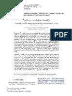 Dialnet-OptimizacionDeLaProduccionDeCarbonActivadoDeCascar-3219924