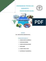 BIOLOGIA SERES VIVOS REINOS DOMINIOS NIVELES-2.docx